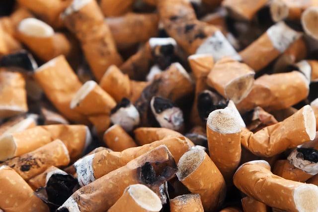 Kicking the Habit: Psilocybin Mushrooms Proven to Help Long-Term Smokers Quit