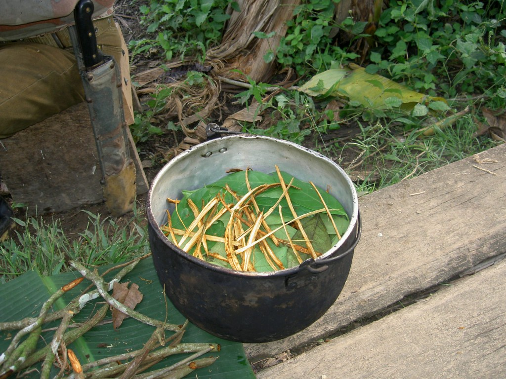 The Amazonian Caretakers of Ayahuasca: The Shipibo Tribe