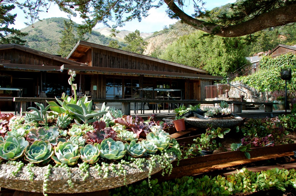Esalen Insitute in Big Sur, California, has nurtured the minds of some of psychedelics' most famous advocates. | Image Source: Flickr User bradfordcoy