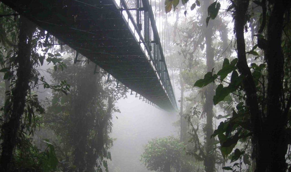 Costa_rica_santa_elena_skywalk