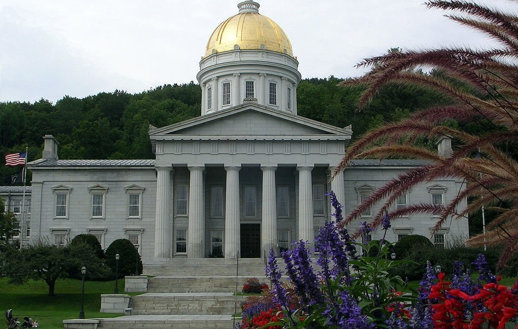 Making Ibogaine Treatment Legal in Vermont: An Interview with Bonnie Scott