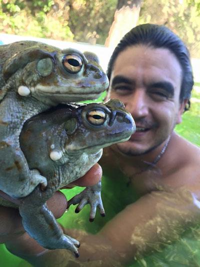 2_toads