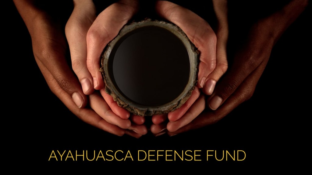 aya-defense-fund