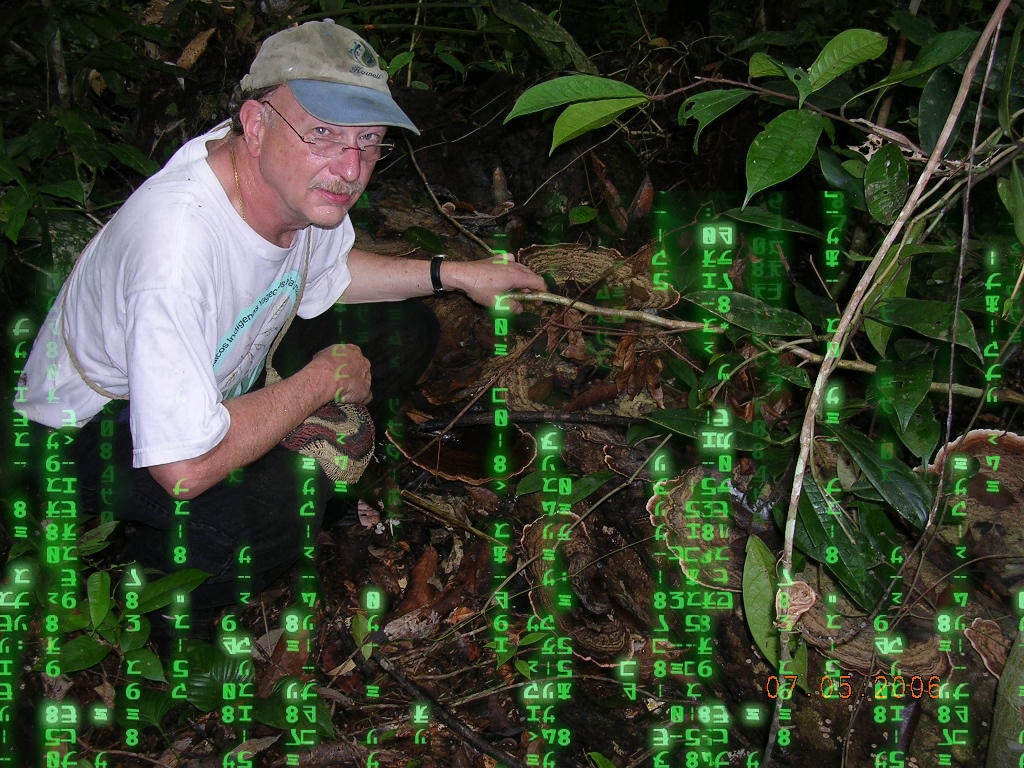 Ayahuasca and Artificial Intelligence: A Conversation with Dennis McKenna