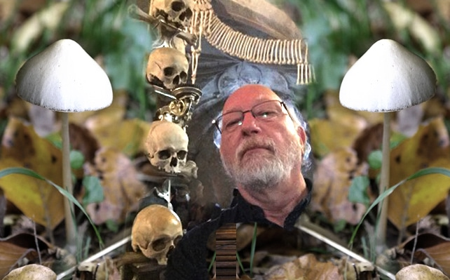 Death and Family Healing with Psilocybin: A Conversation with Dennis McKenna