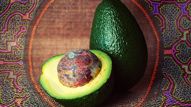 ayahuasca and avocados