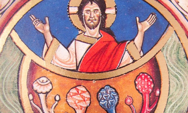 The Psychedelic Gospels: Interview with Jerry Brown Ph.D.