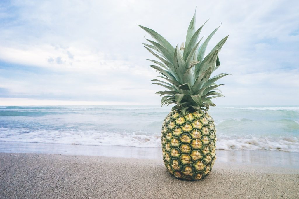 Pineapple Fund MAPS