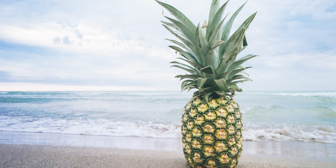 Pineapple Fund Donates 60 Bitcoin to MAPS in Delicate Time for Crypto and Psychedelics