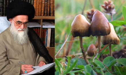 Iranian Religious Authority Considers Psychedelic Medicines Halāl