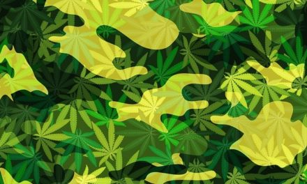 Ongoing Study Looks at the Efficacy of Cannabis-Based Treatments for PTSD