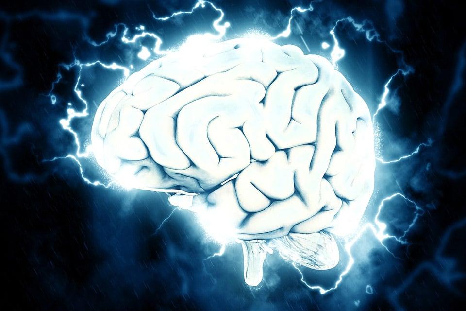 neurogenesis-5-meo-dmt