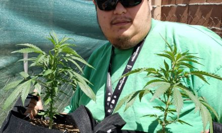 Cannabis Home-Growers in New Mexico Offer An Alternative to Recreational Sales: Joseph Ramirez on Making Home Cannabis Grows More Accessible