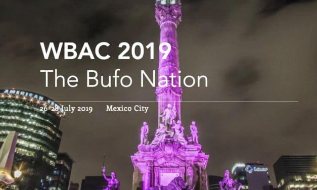 Upcoming World Bufo Alvarius Congress Looks to Nurture Global 5-MeO-DMT Community