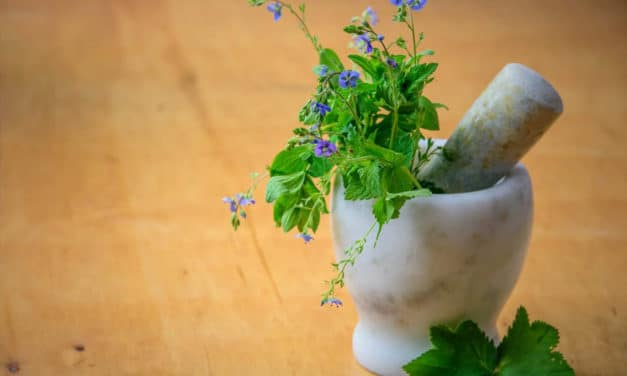 Bay Area Healers Resilience Fund Seeks Donations To Support Integrative Healers