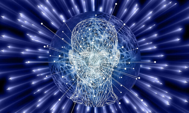 Studying Ibogaine and 5-MeO-DMT for Traumatic Brain Injuries: Interview with Amber Capone of VETS